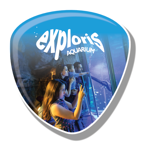 Exploris Button
